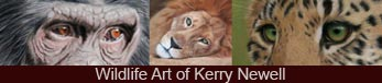 Wildlife Art of Kerry Newell