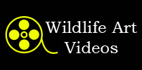Wildlife Art Videos